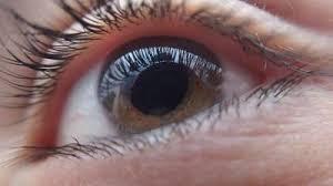 Visulan Complex – korekcja wzroku - skład – efekty – jak stosować